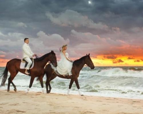 sesje slubne na koniach Darłowo